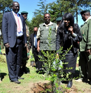 Cabinet Secretary Prof.Judi Wakhungu watering a commemoraative tree at this years international day of forest at keraita forest in kaimbuu County