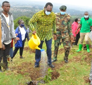PS, Ministry of Environment and Forestry, Dr. Chris Kiptoo, watering a commemorative tree after planting at Ngong Hills forest, Kajiado County.