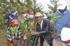 Environment CAS Hon. Mohammed Elmi (in black jacket) accompanied by Ahadi Kenya Trust Director Dr. Stanley Kamau (right) donating seedlings to aged persons at Pundamilia village of Maragua.