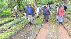 The PS, Dr. Kiptoo also toured a community tree nursery in Sabor forest. He said the Government will continue supporting local communities to produce seedlings that will be planted in forests.