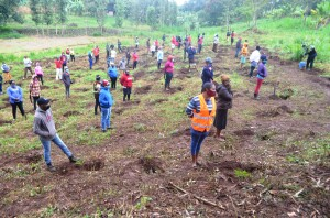 Youths preparing to undertake the tree planting exercise where they were urged to come up with their own nurseries with a promise that the government will buy the seedlings.  Photo by Irungu Mwangi