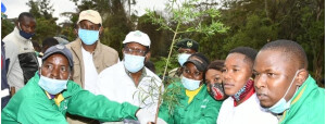 Part of the restoration activities for Nairobi River clean up will be planting trees .