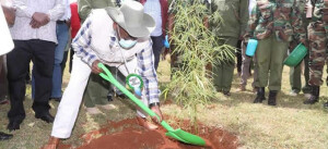 Environment and Forestry PS Dr. Chris Kiptoo plants a bamboo tree on arrival at the Kaptargat DEB Primary School, Elgeyo Marakwet County