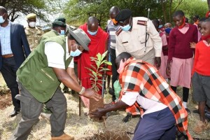Below : Pupils of Ilekulnyeti Primary School plant trees to mark the International Day of Biological Diversity, the Ministry of Environment and its agencies donated 11,500 seedlings to be distributed to schools in Nasaru Nature Conservancy to compliment the community conservation efforts.